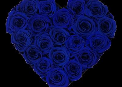 Velvet Heart Blue S2{{1576715656414}}