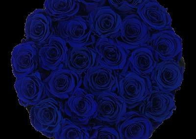Velours Blue L2