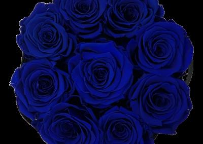 Velours Blue S2