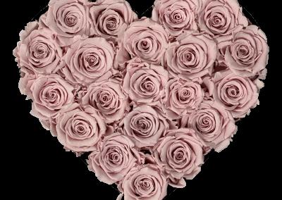 Velvert Heart Pink S2