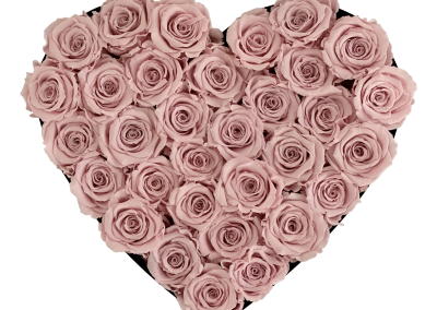 Velvet Heart Pink L2