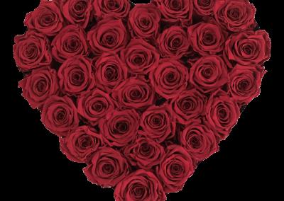 Velvet Heart Red L2{{1576715677879}}