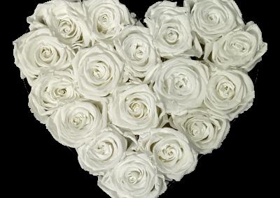 Velvet Heart White S2{{1576715692099}}