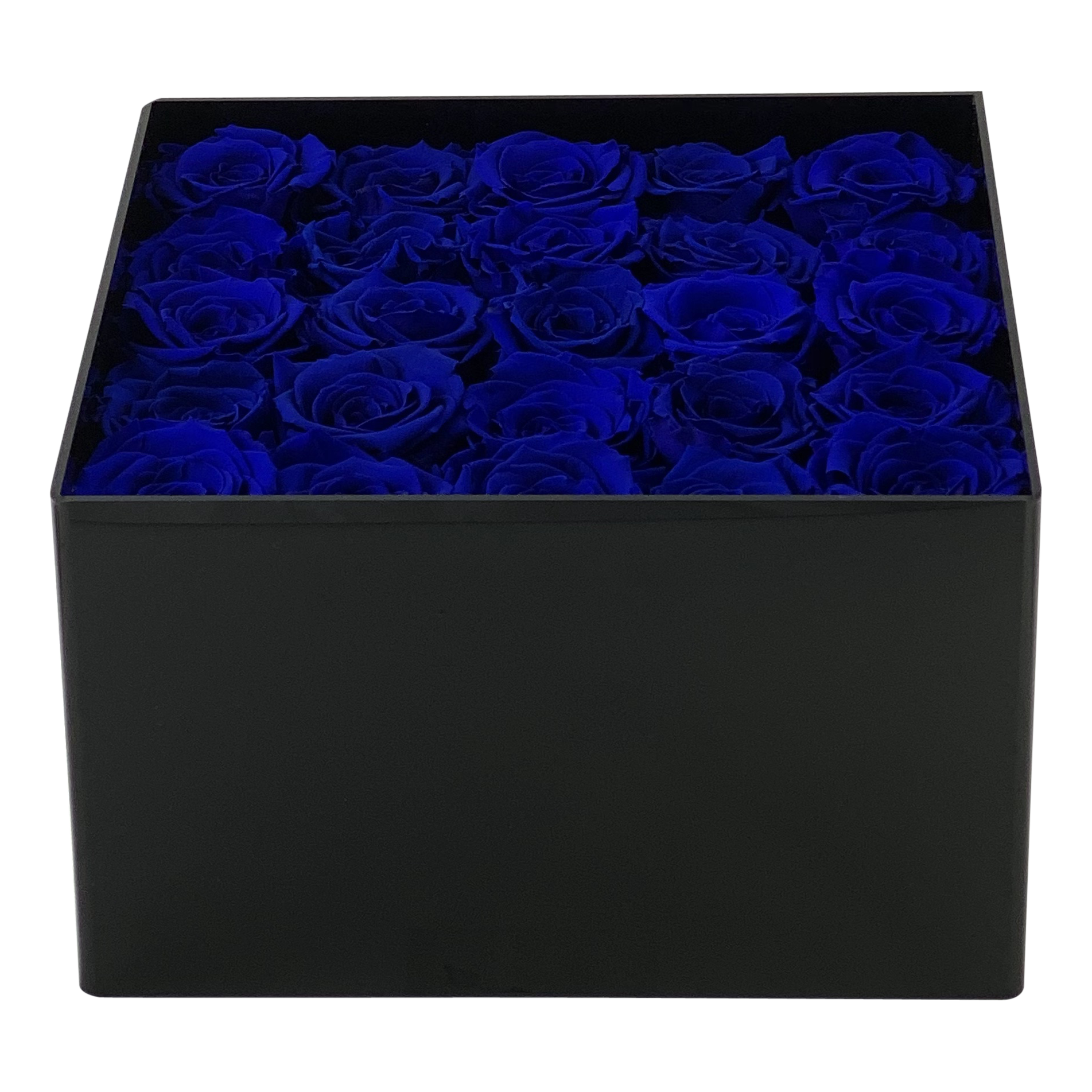 Dark Diamond Blue L