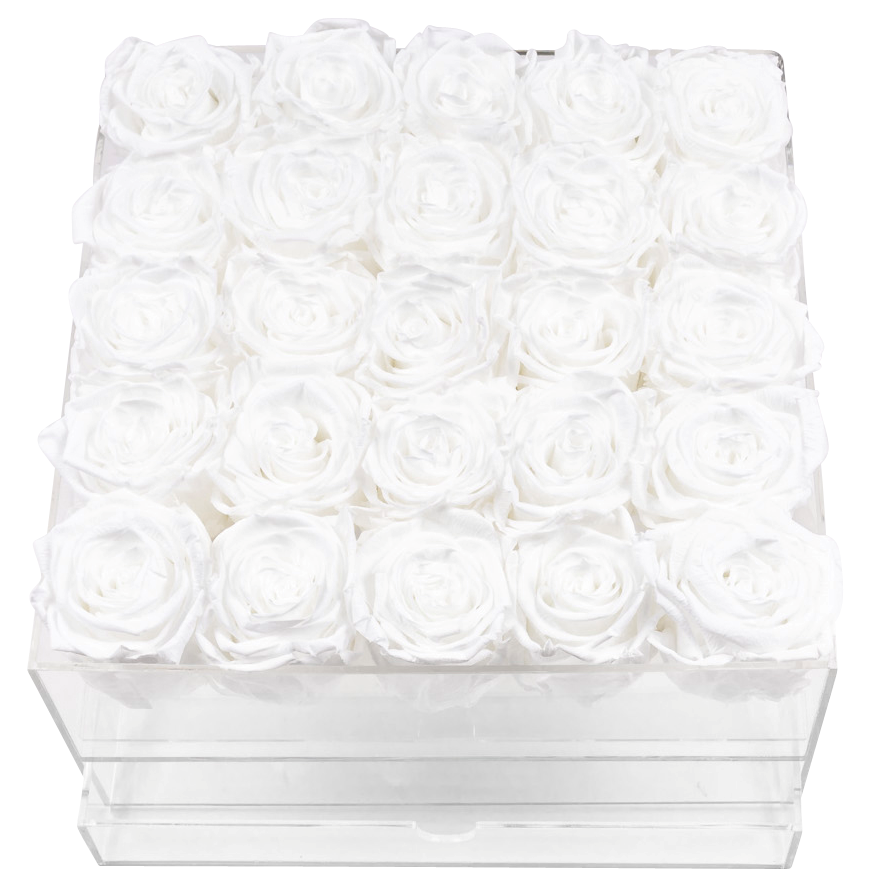 Crystal Gift Deluxe White